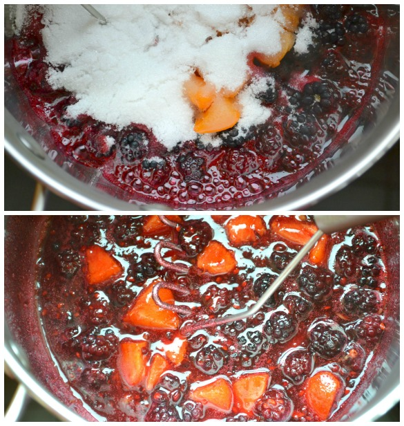 blackberry apricot jam Collage Blackberry Apricot Jam
